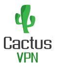 CactusVPN server